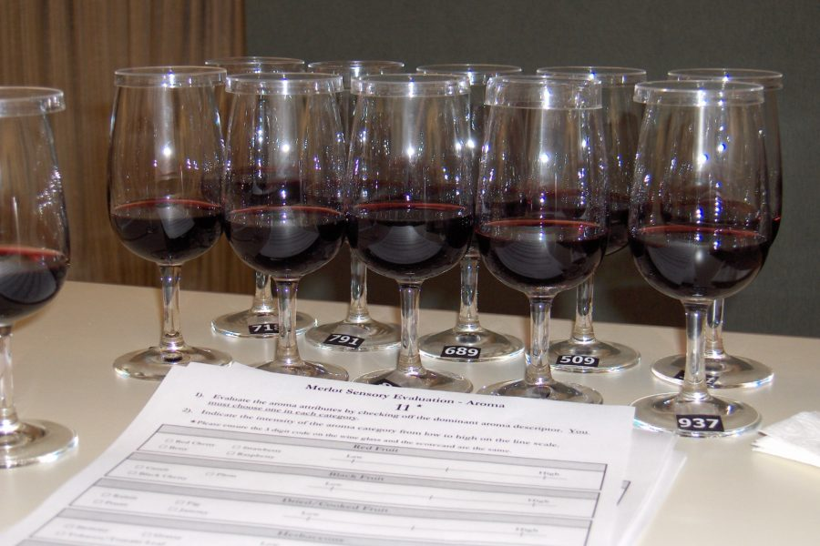 wine_tasting_set_up
